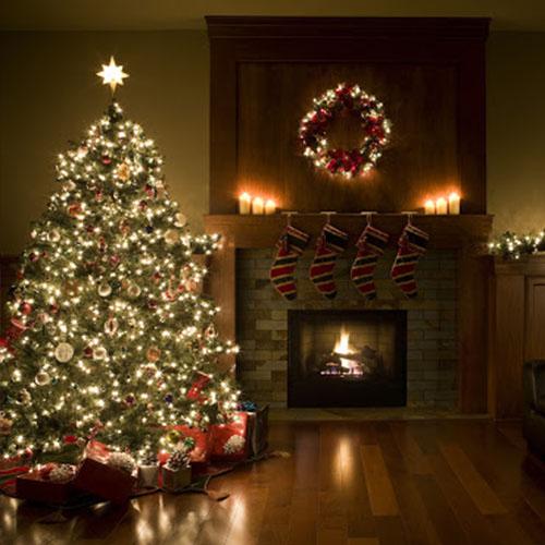Auto-édition : 5 raisons pour offrir la Collection 120 à Noël